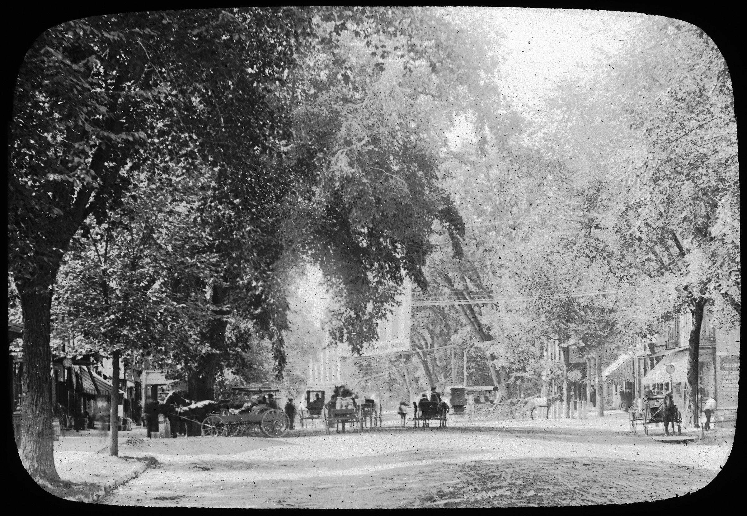 Great Barrington's Main Street in the Nineteenth Century, when it had a classic American streetscape of mature street trees forming a canopy over the space.